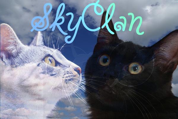 SkyClan