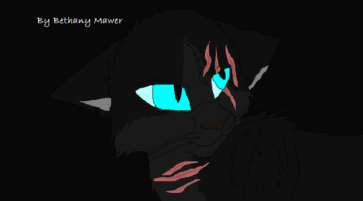 Black-Blackheart-warrior-cats-forever-36829948-898-497