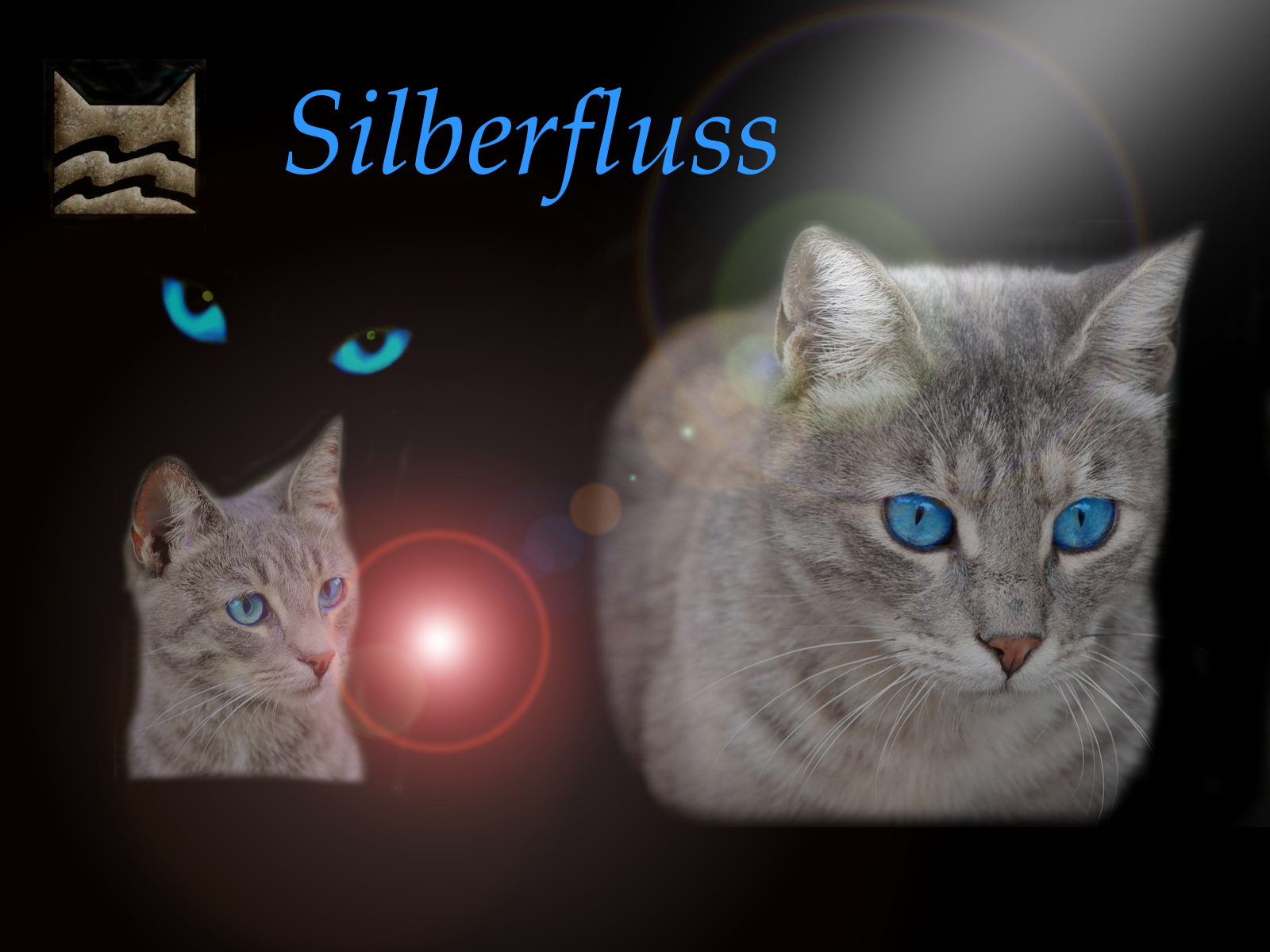 bild silberfluss warrior cats wiki fandom powered by wikia. Black Bedroom Furniture Sets. Home Design Ideas