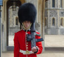 Королевская гвардия Великобритании
