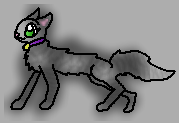 File:Eyes, Collar, And Nose Kittypetfelo.png