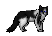 File:Wolfspirit.apprentice.png