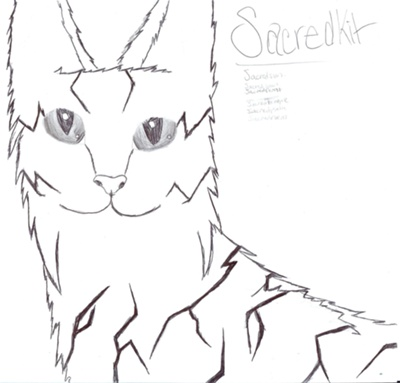 Sacredkit Drawing