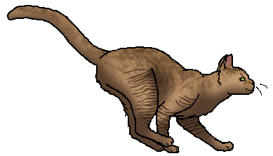Geckotalon.star