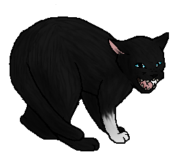 File:Scourgepaw.df.png