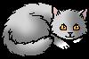 Doveheart.kitten