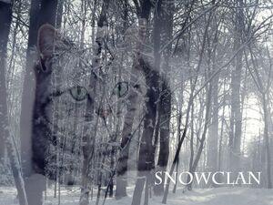 SnowClan
