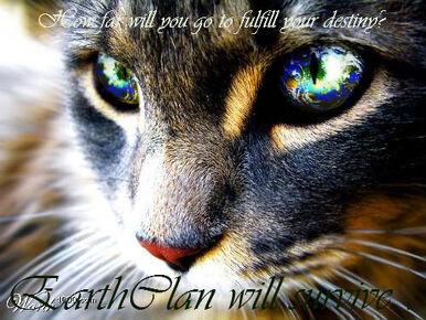 EarthClan cat