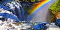 RainbowClan/Archive 2