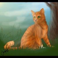 SQURREL - MOONWISH LION ALSO
