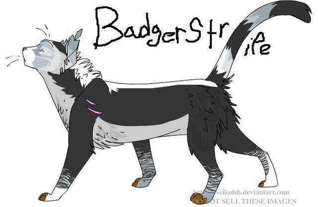 File:Badgerstripe.jpg