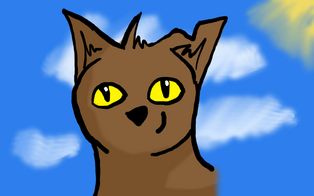 Mousebrair.profile