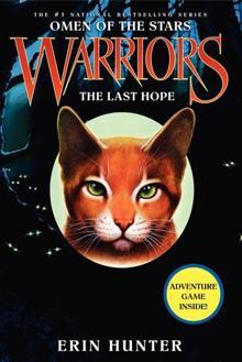 File:Omen-of-the-stars-warriros-the-last-hope.jpg