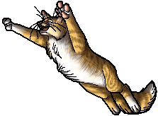 File:Finchwing.app.png