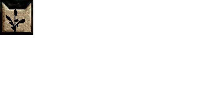 File:FernClan's Symbol.jpg