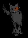 File:Zuko cat better made.png