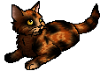 File:Lynxkit.star.png
