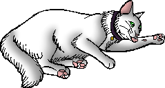 File:Harveymoon.kittypet.png