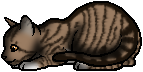 Leafpool.kit