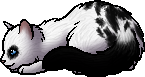 File:Darktail.kit.png