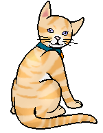 File:Sunfall.kittypet.png