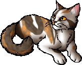 File:Sorreltail.star.png