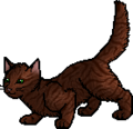 Copperpaw.apprentice.png