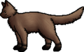 Mud Paws.rogue.png