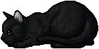 Crowfeather.kit.png