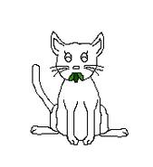 Cat-Blank-12