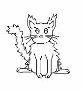 Cat-Blank-24