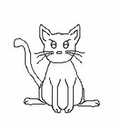 Cat-Blank-7