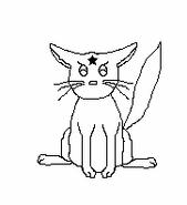 Cat-Blank-6
