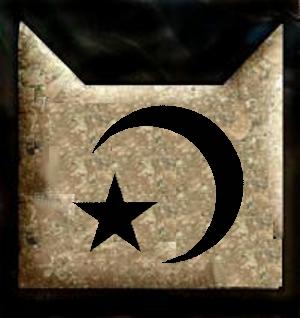 File:Nightclan symbol by fellowsharcar-d4pz160.jpg