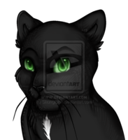 File:SWIFTCLAW.png