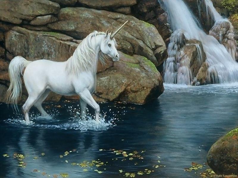 Image - Magic Animals WallpapersTHR999.jpg | Warriors Of Myth Wiki ...