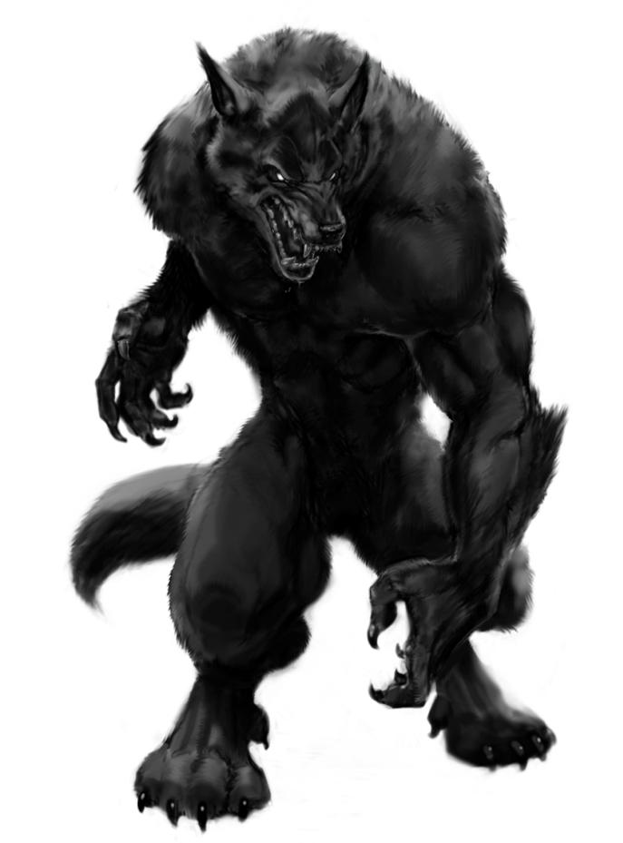 Shapeshifter Character Design : Image black werewolf lycanthrope g warriors of myth