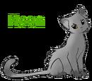 Moon(TNC)