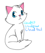 Warriors Cloudpaw by Esme123