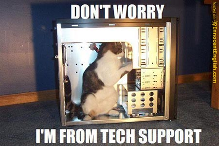 File:Tech support kitty.jpg