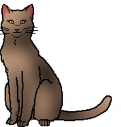 Wind (Adventures of StarClan)