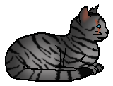 Longtail (Adventures of StarClan)