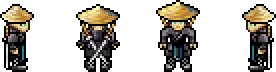 File:Char cryptic ronin.png