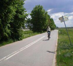 Przyczolkowa (sciezka rowerowa).JPG