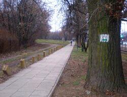 Marymoncka (zielony szlak rowerowy).JPG