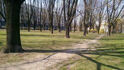 Park Inwalidów park.jpg