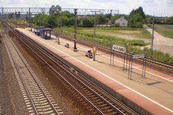 Gołąbki pociąg.jpg