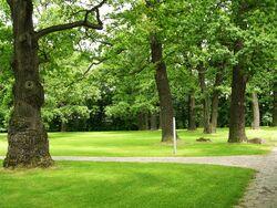 Park przy Pałacu w Natolinie