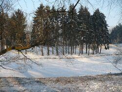 Park Skaryszewski Staw zima.JPG