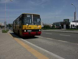 Linia123Gocław